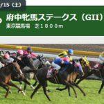 第64回 府中牝馬ステークス(GII)
