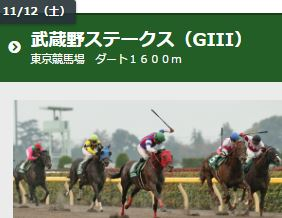 第21回 東京中日スポーツ杯武蔵野ステークス2016